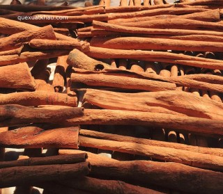 QUẾ CẠO VỎ (Clean whole sticks Cinnamon)